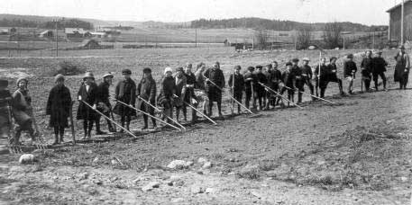 Kerkkoon koululaisia pellonmuokkausta opettelemassa Runninrinteellä1920-luvulla